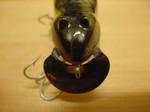メドウマウス 003.JPG